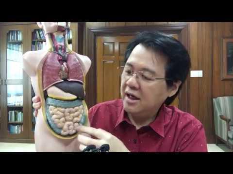 Dugo sa Dumi : Lunas at Gamutan - Payo ni Doc Willie Ong #524