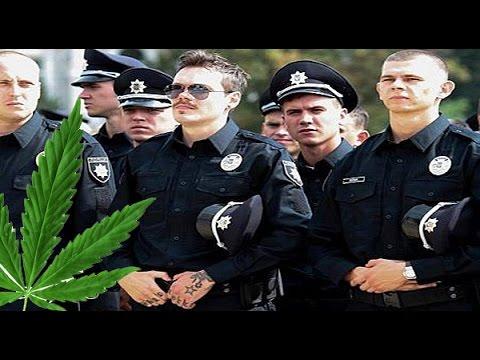 Полицейские крышевали огромную схему наркомафии на Донетчине: зафиксирован сбыт сырья для изготовления опия на 360 млн грн, - ГПУ - Цензор.НЕТ 4676