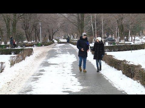 В Волгоградской области выросло число студентов по программе переселения соотечественников