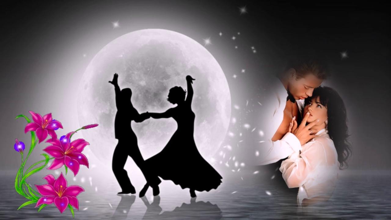 россии овец картинки танцы под луной собака