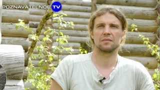 видео Печь камин для дома: виды, преимущества и сравнение