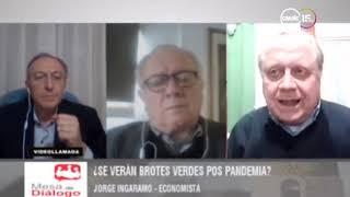 Jorge Ingaramo: ¿Se verán brotes verdes pos pandemia?