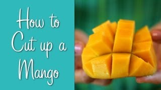 Baixar How To Cut Up a Mango | Hilah Cooking | Learn To Cook Series