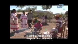 Especiales Corea/Lengua Coreana en la UAN y Viaje temático por el mundo Viva México Atractivo