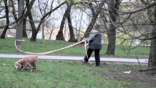 видео Лента оградительная (сигнальная). Конус сигнальный купить в Екатеринбурге -