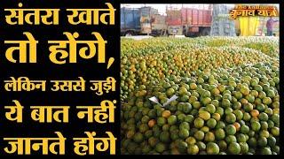 Nagpur Orange Market में Farmers और Traders क्या कह रहे हैं | Maharashtra Elections