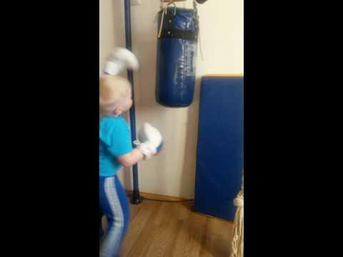 Курган 4 летний боксёр
