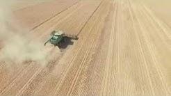 Wheat Harvest 7/8/2019