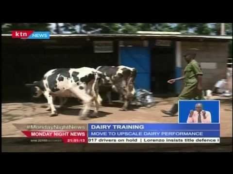 NEXT FRONTIER: Farmers sharpen skills in Dairy farming at a Kiambu farm