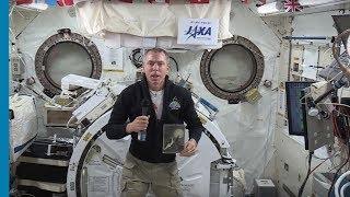 """אסטרונאוט נאס""""א, דרו פויסטל"""
