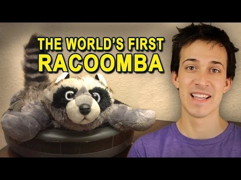 The World's First RACOOMBA!