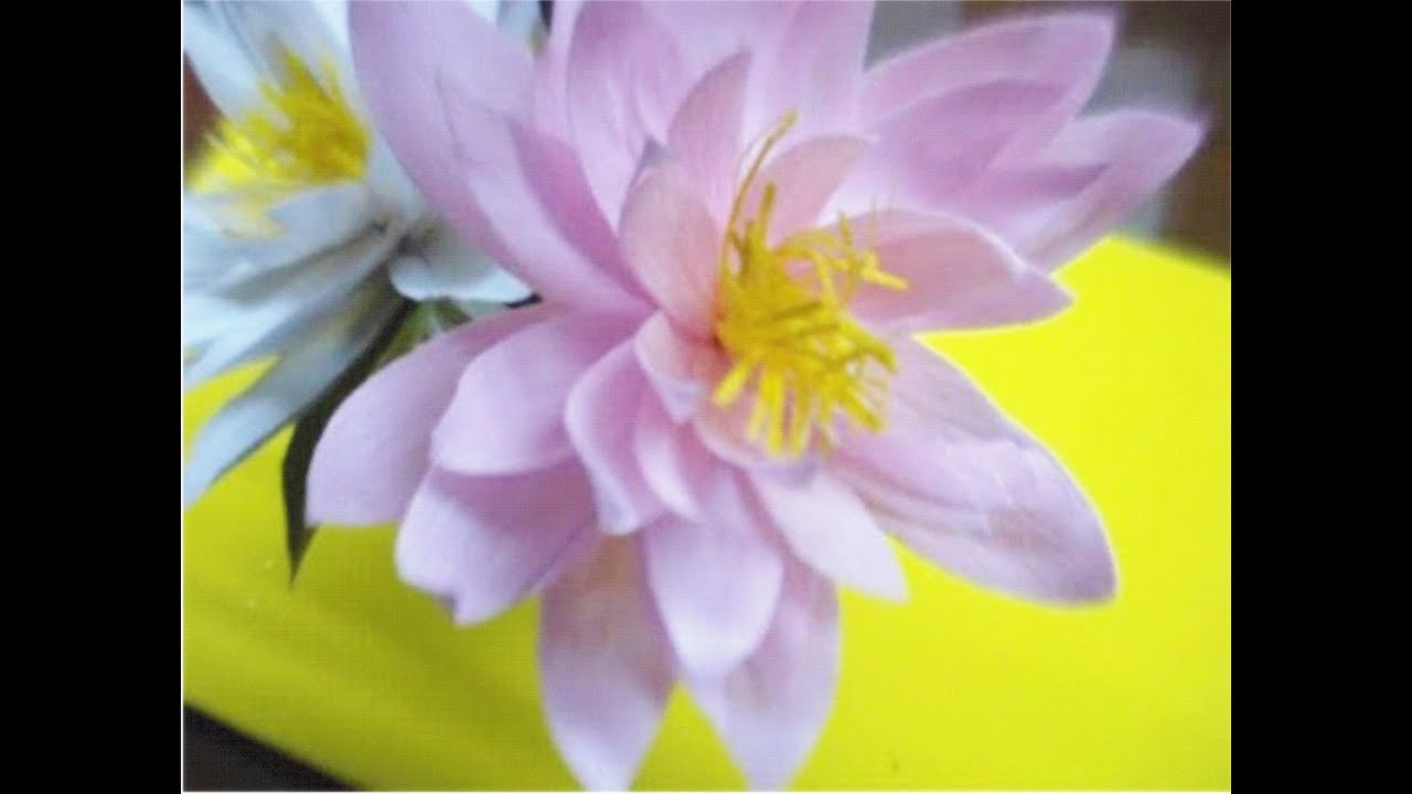 How To Make Paper Flower Lotus Water Lily Flower 38 Youtube