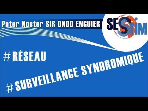 Mise en place d'un système de surveillance syndromique au Gabon