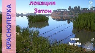 Русская рыбалка 4 река Ахтуба Красноперка под камышом