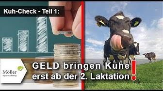 Kühe melken - füttern: Deckungsbeitrag der Kuh bis zur 10. Laktation - Milchkühe richtig füttern