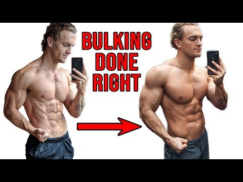 HOW TO SET UP THE PERFECT BULK (step by step)