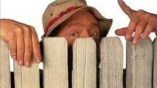 Guy Behind The Fence In Home Improvement