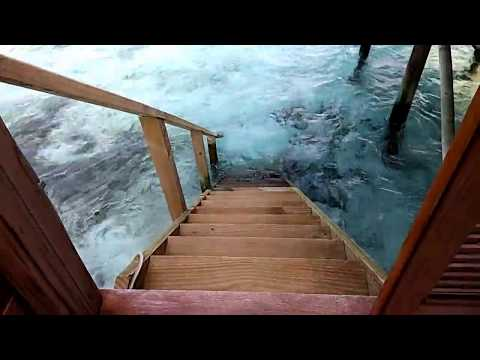 Maldives    (Meeru Island Resort- Water Bungalow with Jacuzzi)