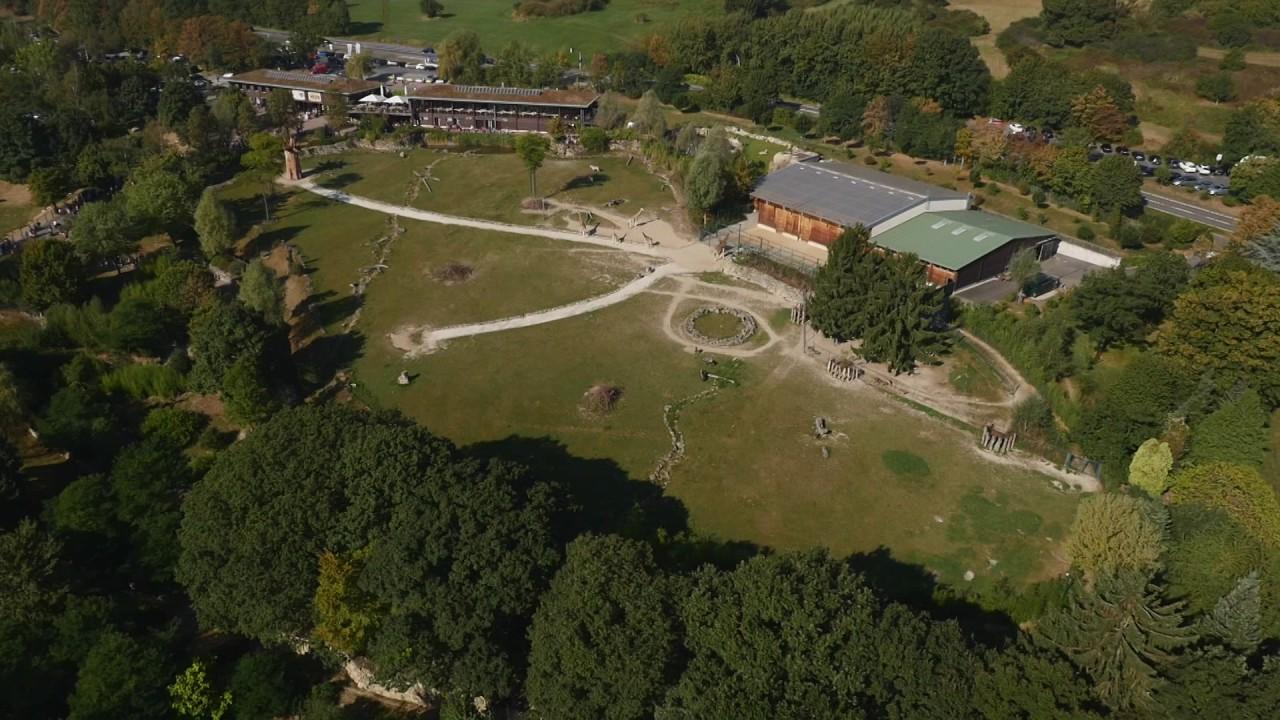 hessen von oben - opel-zoo kronberg - youtube