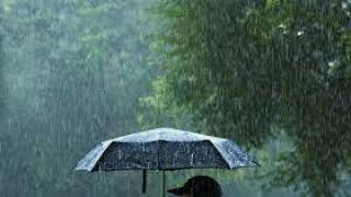 Heavy Rainfallwith Thunder Sounds - COMMERCIAL FREE