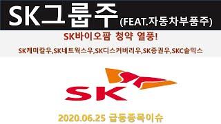 SK바이오팜 청약 열풍 SK그룹주, SK케미칼,SK네트…