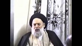 لقاء السيد فضل الله مع الوفد النجفي مطلع التسعينيات