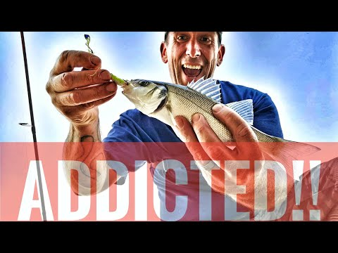Lure Fishing For Bass, The Start Of An Addiction!
