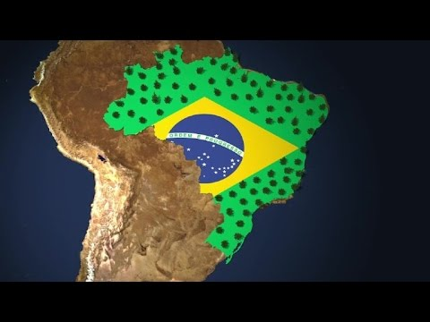 Brazil and its flag