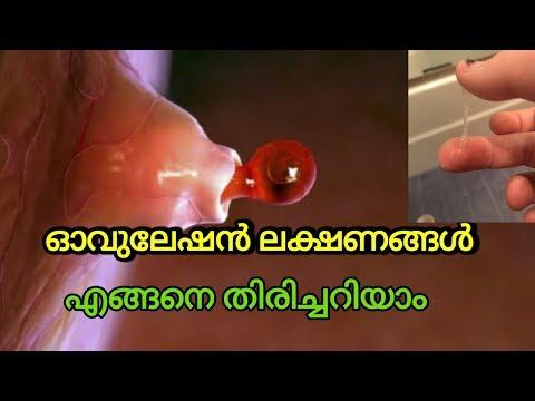 ഓവുലേഷൻ ലക്ഷണങ്ങൾ / Ovulation Symptoms