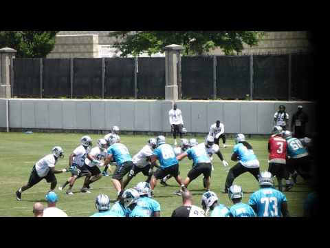 Carolina Panthers - QB Derek Anderson leads offense