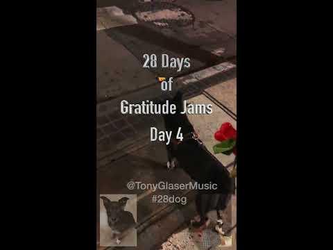 Day 4 - 28 Days of Gratitude Jams