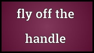 Fly Handle Meaning