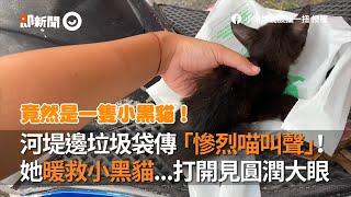 河邊垃圾袋傳出貓慘叫!小姐姐成功救出遭棄小黑貓 | 寵物