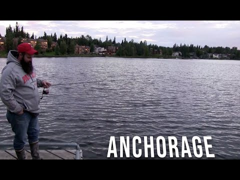 Trout Fishing Anchorage's Delong Lake