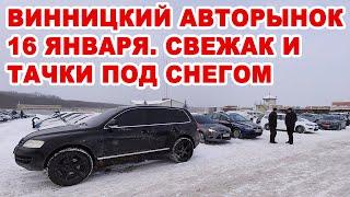 Винницкий авторынок 16 января, вторая суббота локдауна. Авто под снегом и свежий завоз