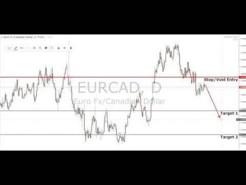 Final Forex Market Review