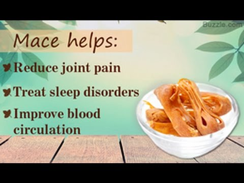 Uses and Health Benefits of Mace Spice