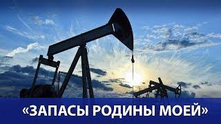 В Минприроды оценили стоимость запасов нефти и газа России