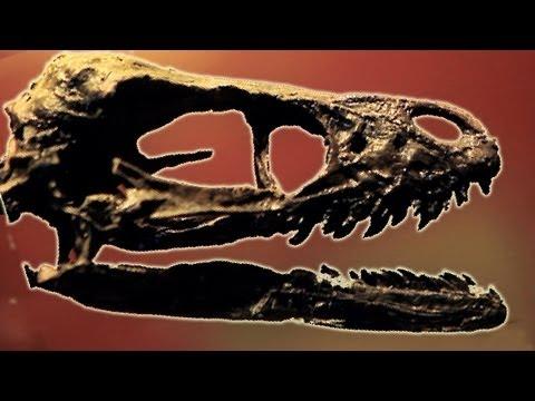 Real life dinosaur hunter: Steve Brusatte - Meet My Planet (Ep 3) - Earth Unplugged