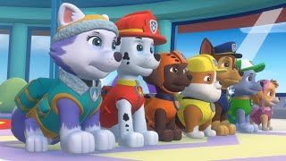 PAW Patrol Mighty Pups Save Adventure Bay - Mighty Pups Super Heroic Rescue Mission Nickelodeon Jr