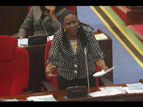 MADAWA YA KULEVYA: Ester Bulaya ajilipua Bungeni