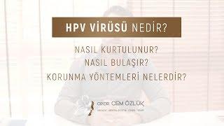 HPV Virüsü Nedir? - Nasıl Bulaşır? - Nasıl Kurtulunur? - Korunma Yöntemleri Nelerdir?