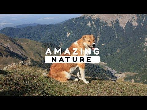 Beautiful Nature Video in Full HD - Gamarvan Village - Peak Charkh - Episode 2 - 6 Minute