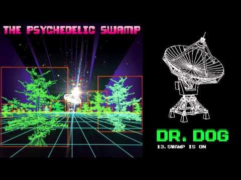 """Dr. Dog - """"Swamp Is On"""" (Full Album Stream) Mp3"""