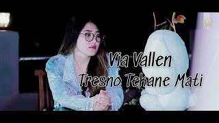 Download Via Vallen - Tresno Tekane Mati
