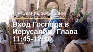 Вход Господа в Иерусалим. Отирание ног Господа маслом. Толкование Евангелия от Иоанна 11:45-12:19