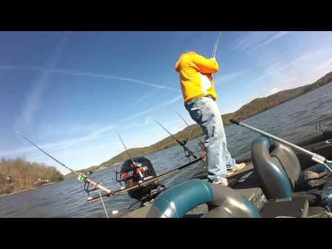 Lake Guntersville - Monster Blue Catfish  11/21/2015