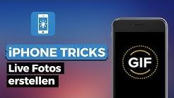 Live Photos am iPhone aktivieren, erstellen & finden