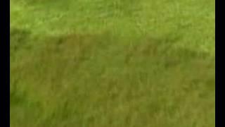 Alan Parsons Return To Tunguska