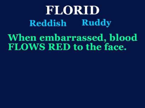 Florid   YouTube